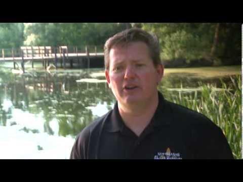 The Rougarou: Louisiana Swamp Monster - YouTube