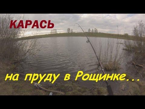 летняя рыбалка на карася - 2017-05-12 04:33:46