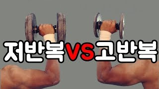과학적으로 증명된 고반복 vs 저반복 (근비대를 위한)