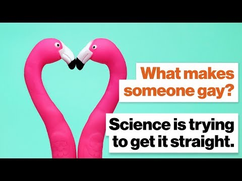 What makes someone gay? Science is trying to get it straight. | Alice Dreger