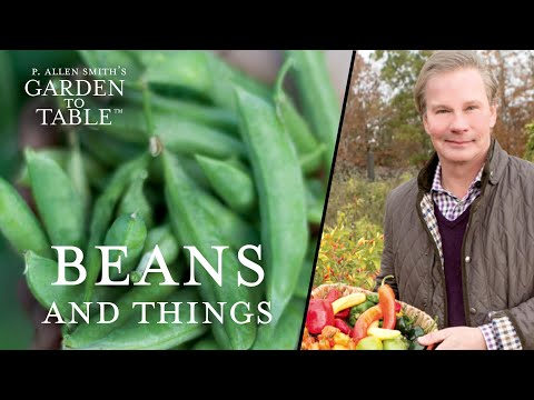 How to Make Vegetarian Recipes with Beans and Things  | G2T209