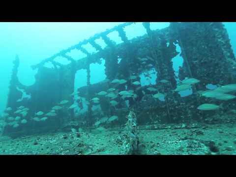 Florida Pegasus wreck dive