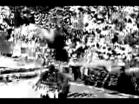 Panda Bear 'Slow Motion' (Unofficial Music Videol)