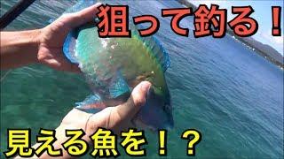 釣りが好き!海が好き!(笑) ツイッタ→ https://twitter.com/orion529...
