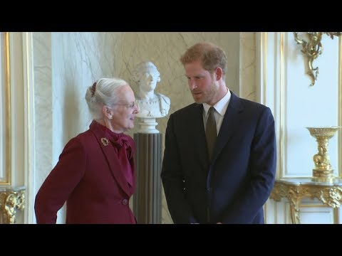 Prince Harry meets the Queen of Denmark on first official visit