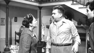 Don Camillo e la Famiglia