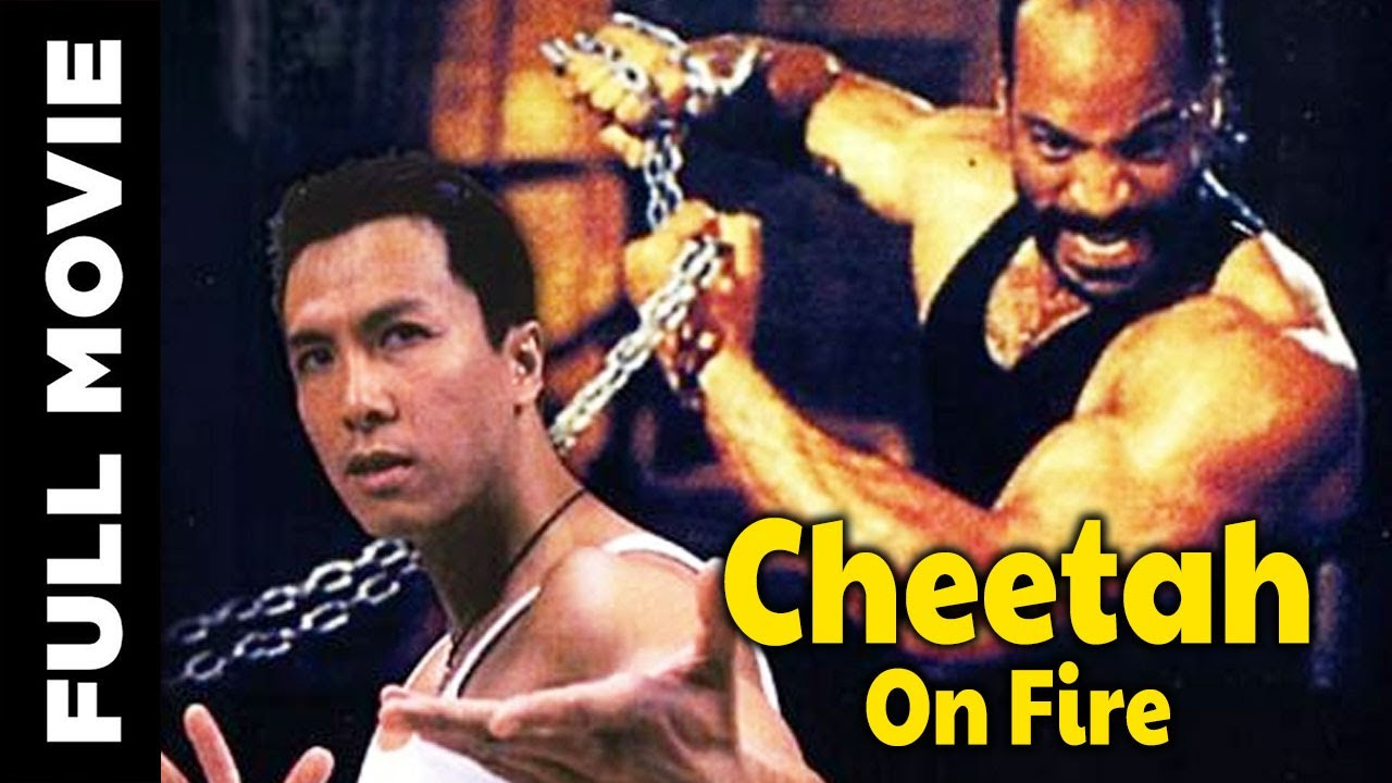 Download Cheetah on Fire | Hollywood Kung Fu Movie | Full HD Martial Arts Action Movie
