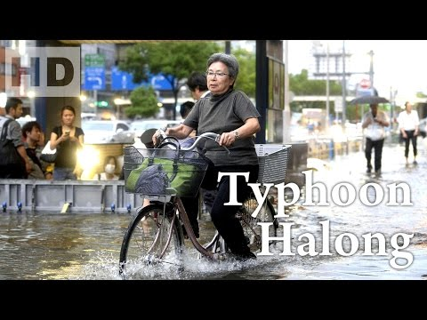 271. Super typhoon Halong is forecast to strike Japan on Saturday