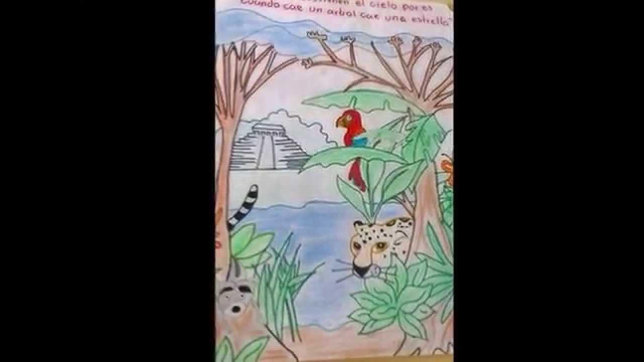 La Maestra Laura Y El Concurso De La Selva Lacandona Youtube
