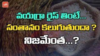 వయగ్రా రైస్.... తింటే సంతానం కలుగుతుందా...? నిజమేంత...? Telugu News