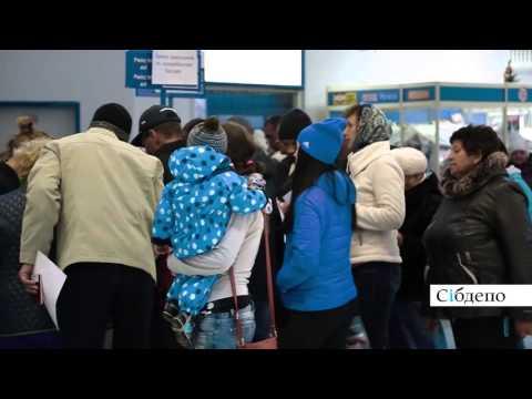 Прилёт самолета из Египта в Кемерово