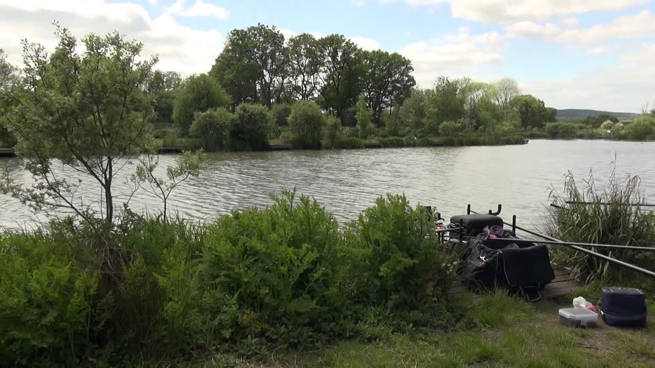 Willinghurst Fishery Cranleigh Surrey Anglers Mail Tactical