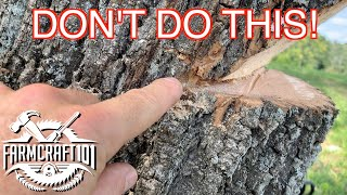 No Nonsense Guide t๐ Tree Felling. How to cut down a tree safely. FarmCraft101