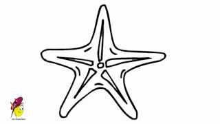 Star Fish - How to draw a Fish - Starfish easy drawing