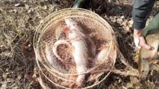 Рыбалка фитилями мережкой вентерями Закрытие сезона рыбалки на щуку