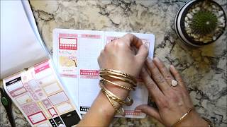 Plan With Me - Weekly | New Walmart Traveler's Notebook | Wonton In A Million Weekly Sticker Kit