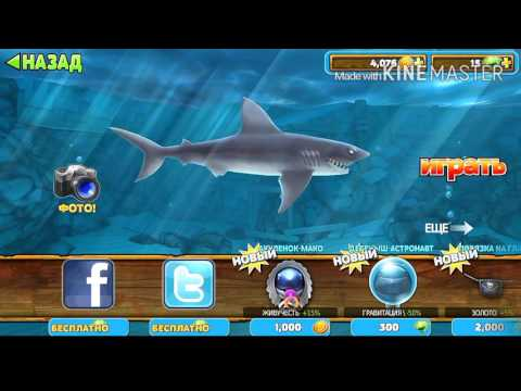 Баг на Hungry Shark!!! -_-