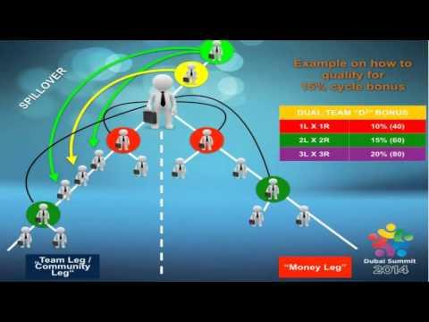 DubLi Network Final D2G2 Presentation 13.10.2014