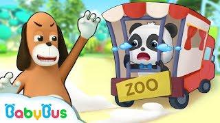 Bayi Panda Kiki Di kirim Mr.Dao Ke Tempat Sirkus | Kartun Anak-anak | Bahasa Indonesia | BabyBus