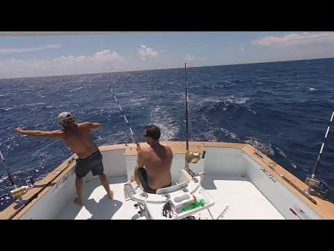 Double Header Sailfish Fight - Oregon Inlet Offshore Fishing
