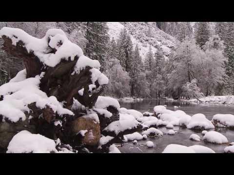 Yosemite Nature Notes - 8 - Snow Line