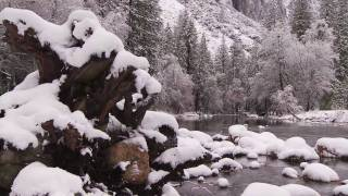 Repeat youtube video Yosemite Nature Notes - 8 - Snow Line