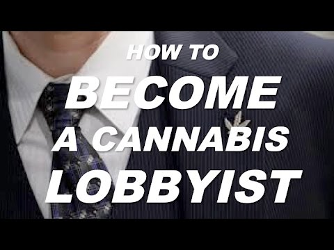 How to Become a Cannabis Lobbyist