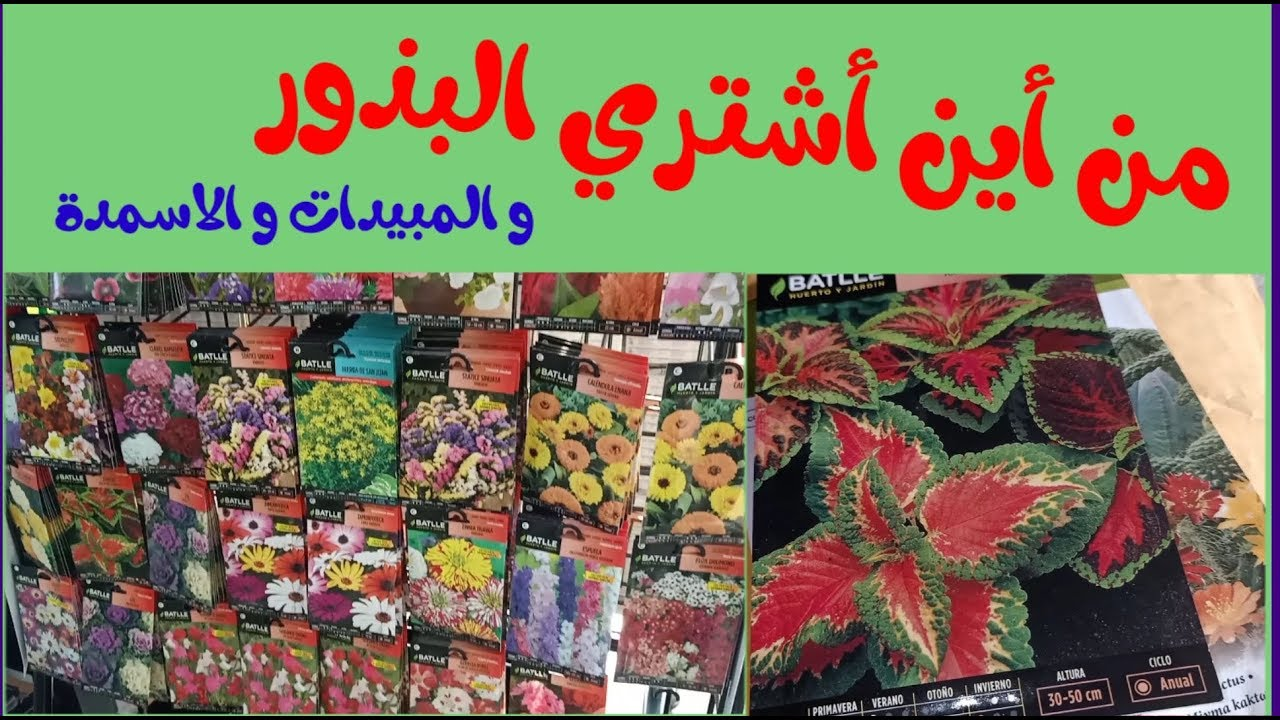 من أين أشتري البذور و الأسمدة و المبيدات الزراعية Youtube
