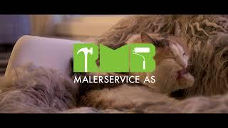 RMB Malerservice - Katt