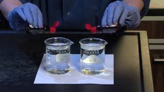 Diffusion and Osmosis - For Teachers
