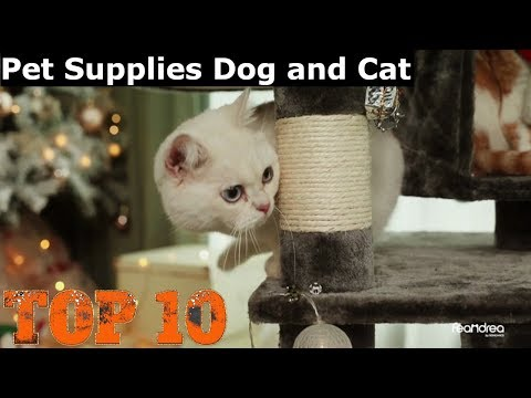 10-best-pet-supplies-dog-and-cat-|-wooden-litter-box-|-orthopedic-memory-foam-dog
