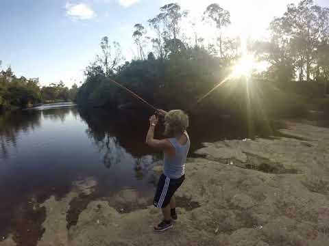 Massive carp outa the parramatta river sydney
