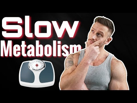 6 Signs of a Slowing Metabolism (not just weight gain)