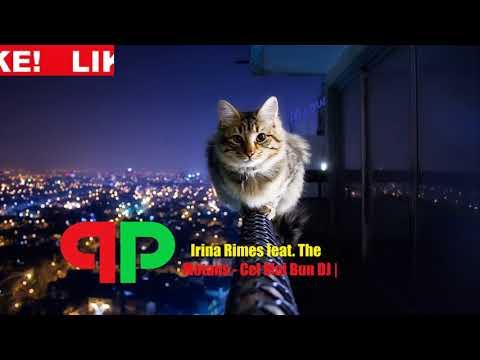 Irina Rimes feat The Motans - Cel Mai Bun DJ🚀| PitcH&Bass Remix|🚀