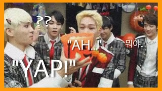 Video SHINee Funny Moments (Part 1) download MP3, 3GP, MP4, WEBM, AVI, FLV Januari 2018