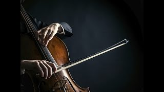 Cello & Piano Moonlight Sonata Beethoven