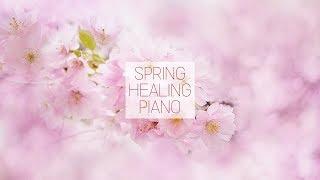 봄에 듣기 좋은 가요 피아노 연주곡 모음 K-pop Spring Healing Piano Music (1 hour)