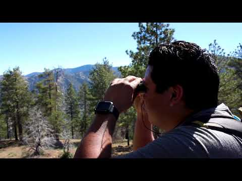 Valcrest Rocks - Angeles National Forest Hiking and Backpacking