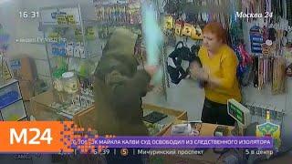 Смотреть видео Дерзкое ограбление зоомагазина произошло в Луховицах - Москва 24 онлайн