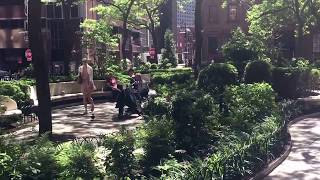 Summer in Hanover Square, New York (6-1-17)