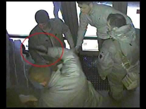 Відео кофлікту на турбазі в урочищі Драгобрат (Закарпаття)