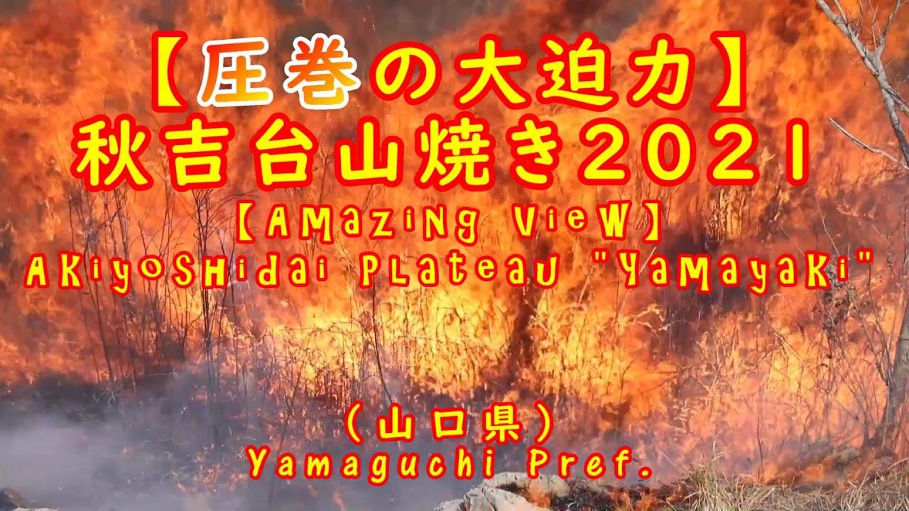 秋吉台 山焼き 2021