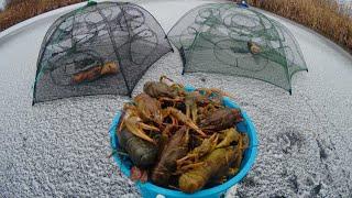 лОВЛЯ РАКОВ ЗИМОЙ! Ставим раколовки под лед. Простой способ наловить раков зимой. Winter crayfish