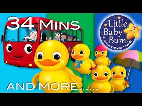 Five Little Ducks On A Bus! | Plus Lots More Nursery Rhymes | 34 Minutes from LittleBabyBum!