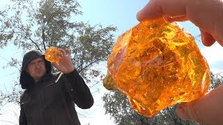 Found Rare Gemstone Amber! In During the Search for Gold!