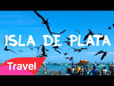 Isla de Plata - Poor's man Galapagos in Ecuador