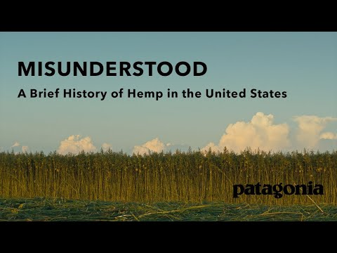 Patagonia Releases Hemp Documentary featuring Kentucky Hempsters Co-Founder