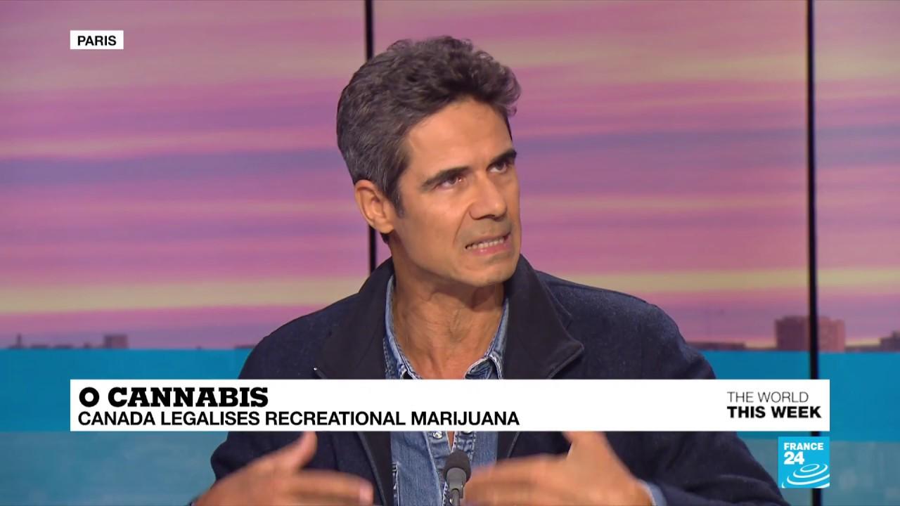 فرانس 24:Decriminalisation of cannabis: