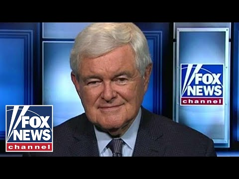 Newt Gingrich: Left becoming more willing to destroy system