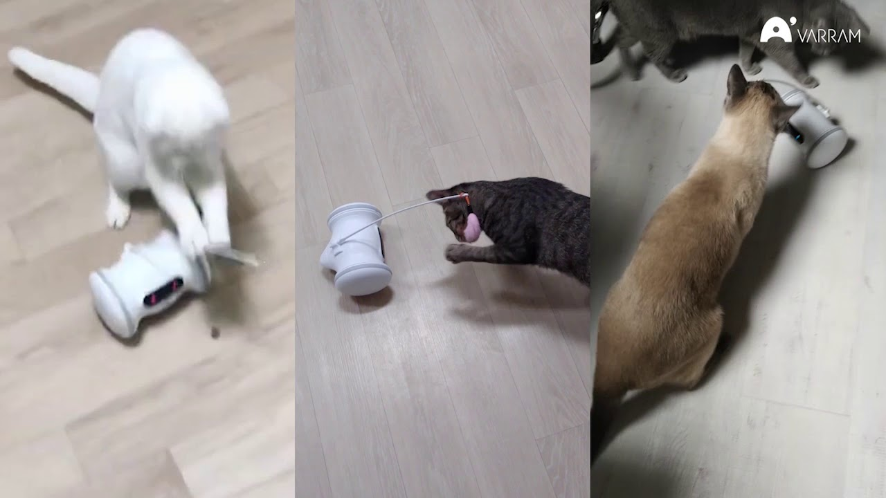 ペット型のロボットではなく、ペット用ロボット「Varram ペット
